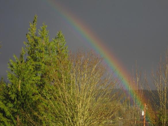 My over the rainbow #44